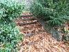 foto van Huis Bloemendal: Bakstenen trap