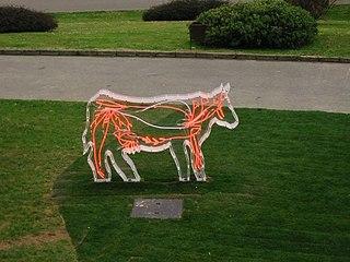 Vaca biológica