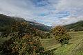 Val Müstair - Oberhalb Fuldera.jpg
