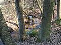 Verlorenwasser bei Hohenspringe.JPG