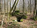 Vestiges de la ligne Maginot (dans la forêt de Mortzwiller) - panoramio.jpg