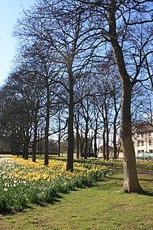 220px Victoria Park%2C Edinburgh in spring