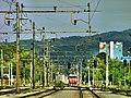VidGajsek - Ljubljanske zeleznice kar tako.jpg