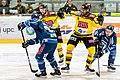 Vienna Capitals vs Fehervar AV19 -109.jpg