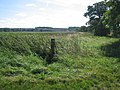 View of fields from footpath near Cotton End - geograph.org.uk - 535913.jpg