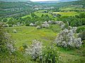 View of the Calder Valley (2542013796).jpg