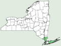 Vitis aestivalis var bicolor NY-dist-map.png