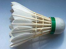 Volant badminton.jpg