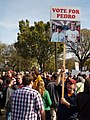 Vote for Pedro Rally to Restore Sanity.jpg