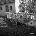 Voz- koš za listje, Vojsko 1959.jpg