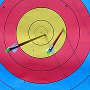 WA archery target with arrows