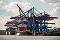 WP Ahoi, Container Terminal Altenwerder, Hamburg (P1080529).jpg