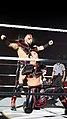WWE Live 2015-04-17 21-43-02 ILCE-6000 0227 DxO (19061783514).jpg