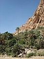 Wadi Bani Khalid17.jpg