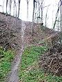 Wanderweg im Schwäbischen Wald - panoramio (1).jpg