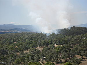 Bushfires in Victoria - Controlled burning in the Warrandyte State Park, east of Melbourne, February 2008