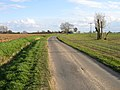 Washdike Road, Kirton, Lincs - geograph.org.uk - 154808.jpg