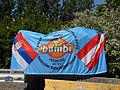 Wasserweltfest 2012 - Fahne des Serbischen Kultur- und Sportvereins.jpg