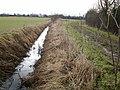 Water-filled ditch alongside Gun's Lane - geograph.org.uk - 1727428.jpg