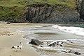 Wave-washed beach at Porthmelgan cove - geograph.org.uk - 1529701.jpg