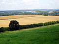 Wayfarers Walk through wheat fields - geograph.org.uk - 211485.jpg