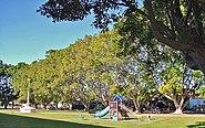 Webb Park
