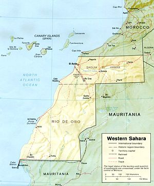 United Nations Security Council Resolution 1301 - Western Sahara