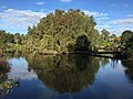 Wetlands at Sherwood Arboretum 01.JPG