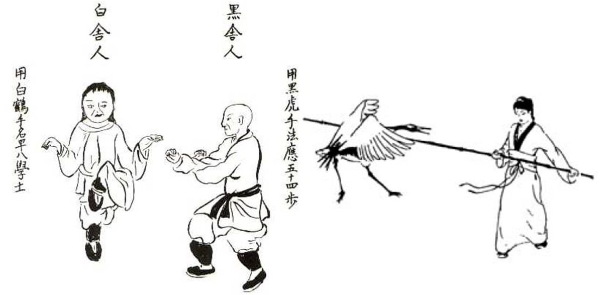 Fujian White Crane Wikipedia