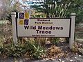 Wild Meadows Trace, Elmhurst, IL - panoramio.jpg