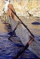 Wild trout project e walker river bridgeport0122 (26249804616).jpg