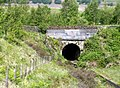 Wildboar Clough water outlet tunnel. - geograph.org.uk - 461438.jpg