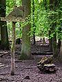 Wildschweingatter Wildpark Alte Fasanerie Klein-Auheim Juni 2012.JPG