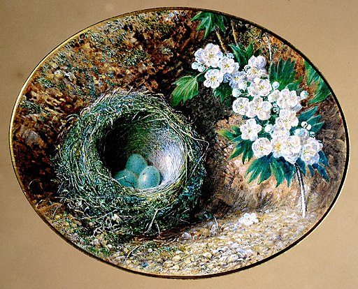 William Henry Hunt, Bird's Nest and Hawthorn Blossom, c. 1850