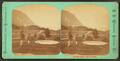 Willoughby Lake, west side, by Webster, J. N. (Joseph N.), 1838-1920.png