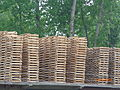 Willow plates for dry.JPG