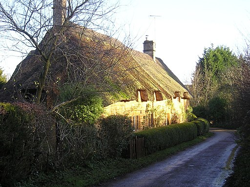 Winter Sunshine on Thatch - geograph.org.uk - 1671260
