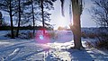 Winter afternoon sunlight - panoramio.jpg