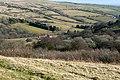 Woodland above Ysgir Fechan - geograph.org.uk - 1176685.jpg