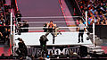 WrestleMania 31 2015-03-29 19-18-24 ILCE-6000 9343 DxO (17928767340).jpg