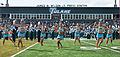 Yulman Stadium halftime show.jpg