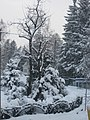 Zakopane, Poland - panoramio (54).jpg