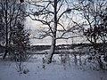 Zima w Borkowie - panoramio (1).jpg