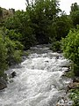 Zorova river.jpg