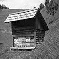 """Čvevənk"" (čebelnjak). Podlanišče 1954 (cropped).jpg"