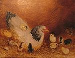 'White Hen in Straw with 11 Chicks' by Ben Austrian, 1912.jpg
