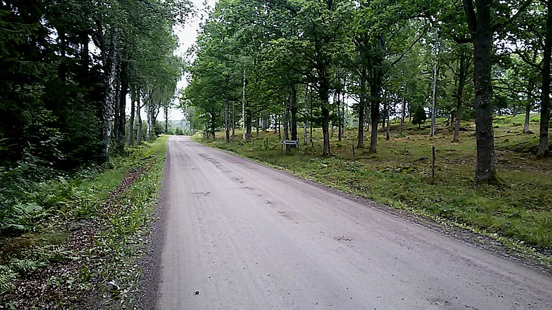 File:Åmål V, Sweden - panoramio - Henrik søvang.jpg