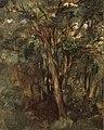 Édouard Manet - Tronc d'arbres.jpg