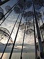 Ομπρέλες, Νέα Παραλία, Θεσσαλονίκη.jpg