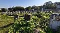 Єврейське кладовище м. Хмельницький 09.jpg